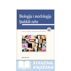 Biologija i morfologija ljudskih zuba